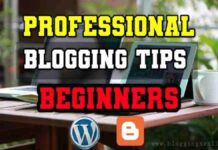 Proven Professional Blogging Tips for Beginners in Hindi 2020