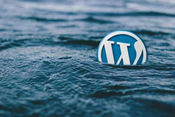 WordPress Website बनाने में कितना खर्चा पड़ता है